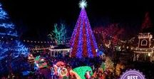 Festivals of the Season