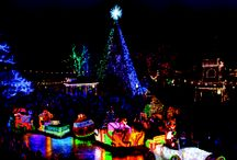 Missouri for the Holidays / Jingle all the way to Missouri and celebrate the holidays right! From festivals to holiday traditions, Missouri attractions are transformed into enchanting wonderlands for the winter season.   / by VisitMO