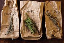 Savory Eats / by Amy Tilton
