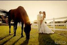 Wedding / by Mandi Lester