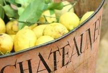 Lemon Recipes / Lemony goodness / by Octoberbeauty