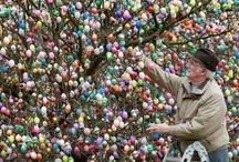 Easter - Spring / by Jennifer Edens