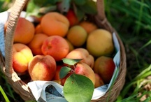 Peach Recipes / by Octoberbeauty