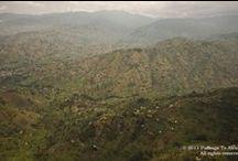 PTA Uganda / Bwindi, Murchisson Falls