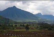 PTA Rwanda, Parc National des Volcans