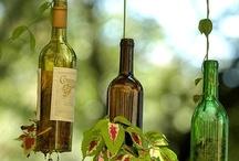 Bottles & Wines