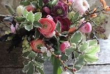 March - flower delivery and wedding flowers all English country flowers / British flowers in flower delivery bouquets and wedding flowers - seasonal March flowers