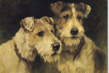 Gone to the dogs / Dogs / by Chris Toler