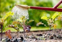 garden tools | tuingereedschap / Als functioneel ook mooi mag zijn / by De Wiltfang