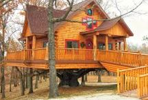 Our Tree House Model / Live life out on a limb! / by Branson Cedars Resort