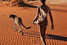 """Postcards: Africa Terra / """"If I know a song of Africa, of the giraffe and the African new moon lying on her back, of the plows in the fields and the sweaty faces of the coffee pickers, does Africa know a song of me?"""" ~ Karen Bixen"""