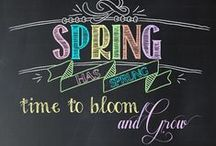 Chalkboard Wall / Spring, Summer, Autumn & Fall / by Allison Messina