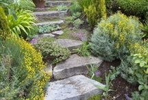 """Garden Ideas / These are visual images of things I would love to incorporate into my """"soon to be"""" backyard garden / landscape."""