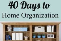 Cleaning and Organizing / Cleaning and organizing tips.  I always intend to clean things, but generally just organize them and call it a day.