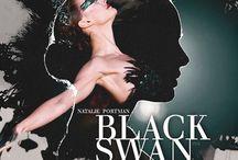 Black Swan / BrotherTedd.com