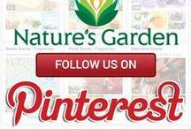 Follow Us on Pinterest / Be sure to follow Natures Garden on Pinterest.