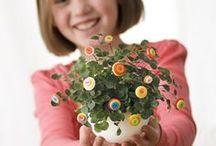Creative Handicrafts / What to craft with your hands! Handicrafts, Charlotte Mason, maker, crochet, knit, embroidery, art, homeschool, craft, make, kids, diy / charlotte mason / crafts with kids / craft projects / art projects / DIY projects / paper crafts