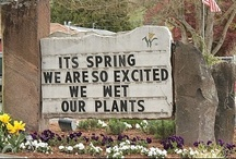 LOL! / by Kathy Spriggs