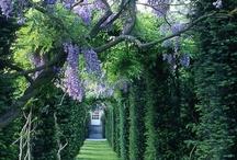 Great Green Gardens