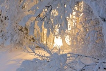 ❤️  Christmas Holidays & Winter Scenes.❤️ / ❤️  CHRISTmas in my favorite time of the year :) ❤️ / by ❤️ Suzanne ❤️ Stlaurent ❤️