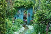 secret garden..... / Thank you for following me!! / by Debi Feeney
