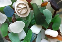 seashells, seaglass, driftwood......LOVE! / one of God's amazing miracles.....a beautiful shell! / by Debi Feeney