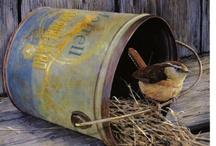 nest......... / by Debi Feeney