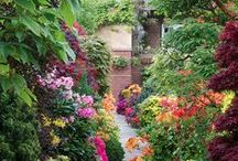 Outdoor Inspiration / Ways to make your landscape and outside areas even prettier