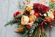 Blooms / by Rachel Riggs
