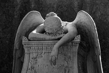 Farewell....RIP / by Debi Feeney