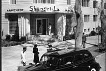 Los Angeles History / I'm a proud 3rd gen. Angeleno, and I can't get enough of collecting old photos of Los Angeles. / by Taylor Morley