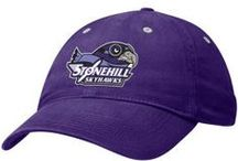 Everything Purple / We love purple. / by Stonehill College