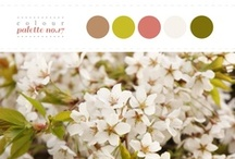 COLOUR INSPIRATION BOARDS / by Andrea Laporte