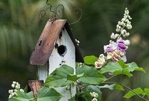 Birdhouses / by Donna Posey