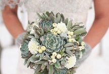 Wedding / by Pauline Clarke