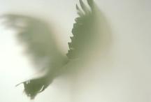 Angels / by Pauline Clarke