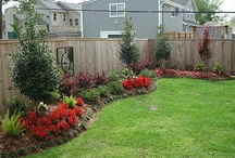 Garden ~ Landscaping / Ideas for the yard, front & back. Porches, decks, garden beds, walkways, green houses, etc. / by Tonya Allison