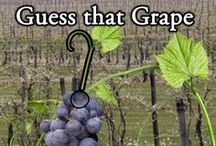 "Guess that Grape / Wine Specialist Mike Martin brings you, ""Guess that Grape!"" Post your guess on each episode at Facebook.com/marketview.liquor. / by Marketview Liquor"