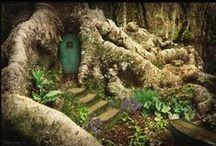 Fairy Garden / by Donna Eli