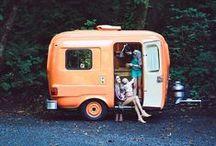 Maybe I'll Take Up Camping. / by Tina Keller