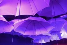 Umbrella Photos & Art / If we find an umbrella related photo or picture that we like, we'll put it on here. / by Hello Brolly