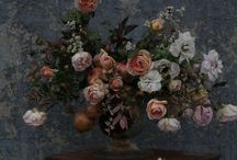 blooms / by Jodi Miller Photography