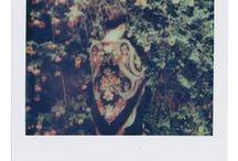 Polaroid / by ☾☼✧ G Y P S Y ☮ L O L I T A ✧☼☽