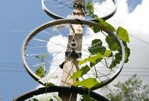 permaculture / gardening permaculture growing your own self sufficiency