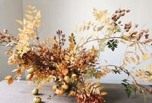 Red Fox Fall Table Inspiration