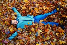 Fall into Fall / by Young America