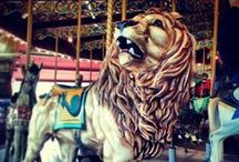 Carousel  / This board is for my sister who restores and paints exquisite carousel animals. / by Roxanne Reynolds-Lair