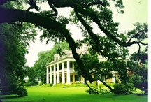 Cajun Country / Places in the south!  / by Lisa Gautreau