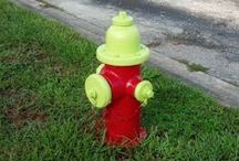 Fire Hydrants of Kissimmee / All pix are unique fire hydrants discovered on 5-7 mile daily walks in Kissimmee, Florida.