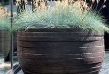 Garden - containers